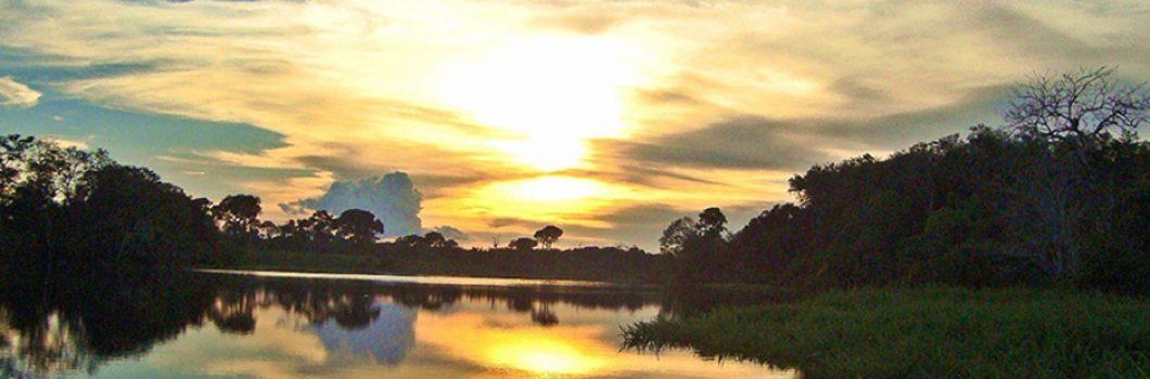 amazon-turtle-lodge-pacotes-buriti-foto-2
