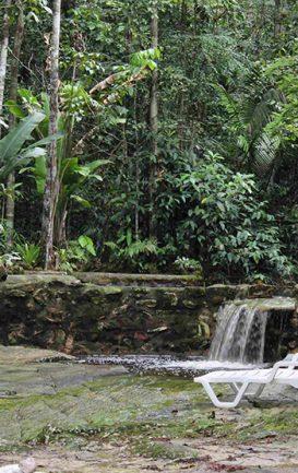 maia-expeditions--hotel-de-selva--amazon-eco-park--5