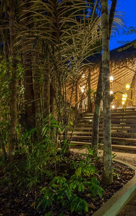 maia-expeditions--hotel-de-selva--anavilhanas-jungle-lodge--1